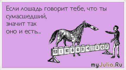 Если лошадь говорит тебе, что ты сумасшедший, значит, так и есть